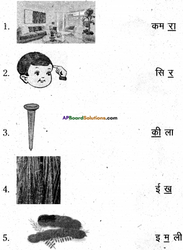 AP Board 6th Class Hindi Solutions Chapter 2 तितली 19