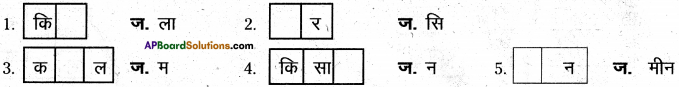 AP Board 6th Class Hindi Solutions Chapter 2 तितली 25
