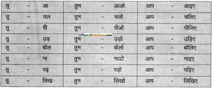 AP Board 6th Class Hindi Solutions Chapter 2 तितली 27