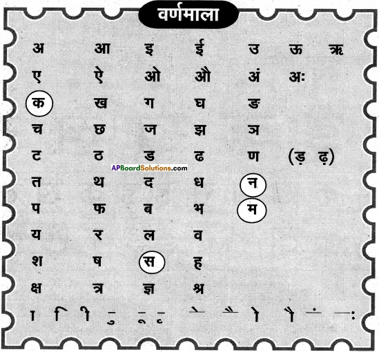 AP Board 6th Class Hindi Solutions Chapter 2 तितली 5