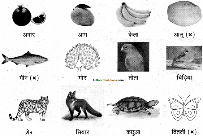 AP Board 6th Class Hindi Solutions Chapter 3 ऊँट चला 19
