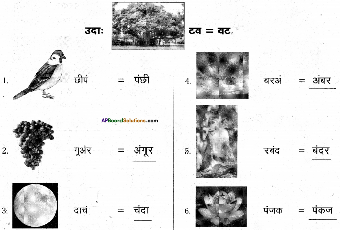 AP Board 6th Class Hindi Solutions Chapter 7 दो मित्र 16