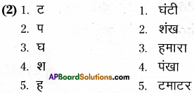 AP Board 6th Class Hindi Solutions Chapter 7 दो मित्र 24