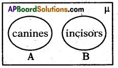 AP 10th Class Maths Bits Chapter 2 Sets Bits 12